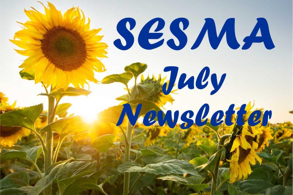 SESMA Martial arts July newsletter