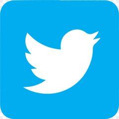 twitter logo used for sesma norwich against bullying website